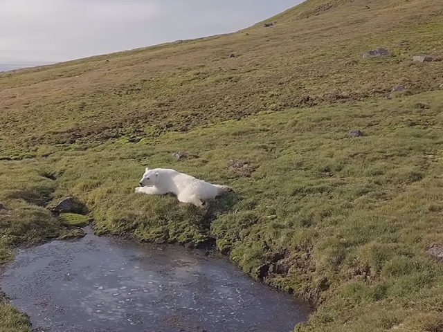 No warplanes or tanks: Russian military releases RELAXING VIDEO from picturesque Arctic archipelago