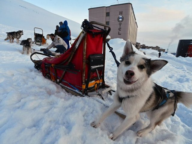 Facebook Takes Down Arctic-Themed Page Belonging to Rossiya Segodnya News Agency