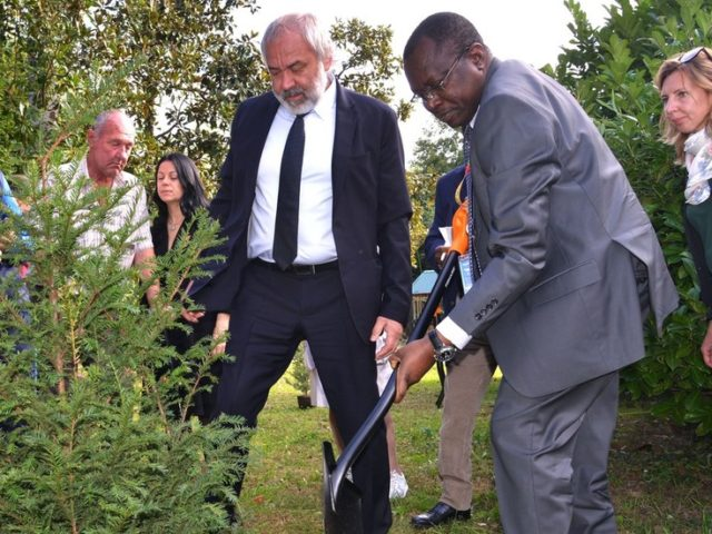 Tree-planting quest: African leaders get in touch with exotic Russian flora (PHOTOS)