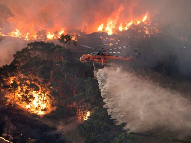 Devastating bushfires may cost Australia up to US$3.5bn & take toll on economic growth