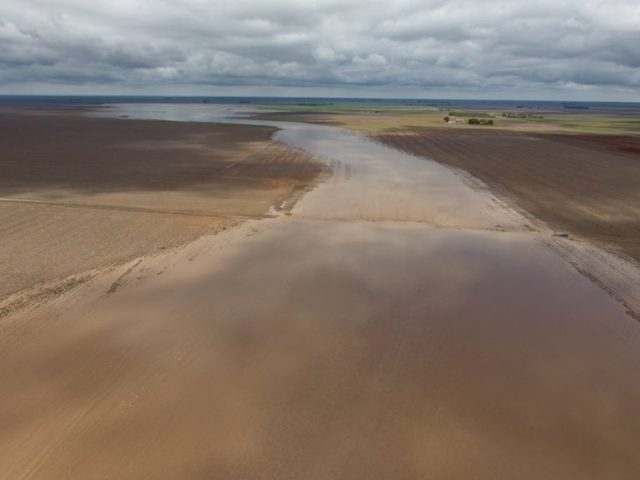 It's raining 'hope and money' for many drought-stricken farmers following multi-day deluge