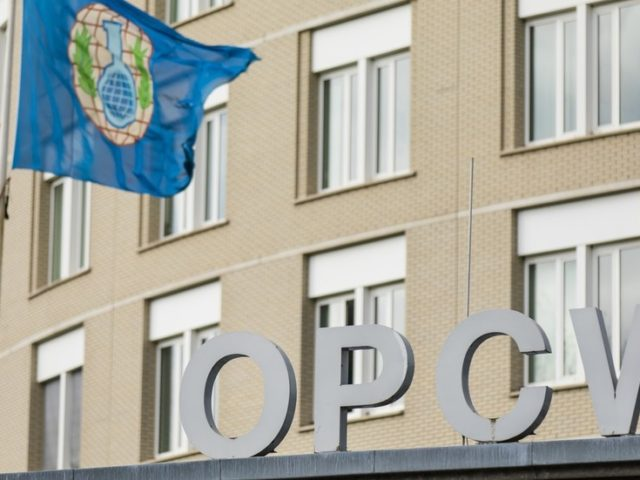 OPCW whistleblowers wrote to watchdog chief, say it 'defies all logic' that they'd 'go rogue' for no reason