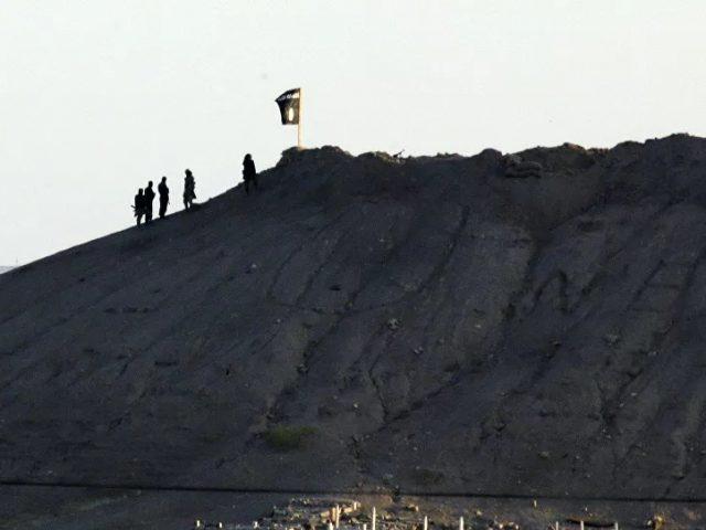 Washington Raises Bounty on Daesh Leader Mawla to $10 Million Amid Reports of His Death