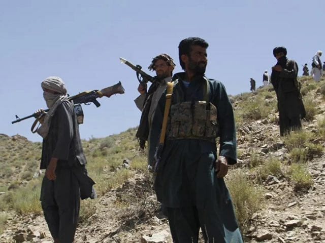 Russia Has Never Delivered Weapons to Taliban, Moscow Says on Collusion Claims