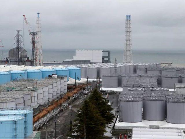 'Brutal Truth': Fukushima's Radioactive Water Threatens Life Worldwide, Warns Environmental Journo