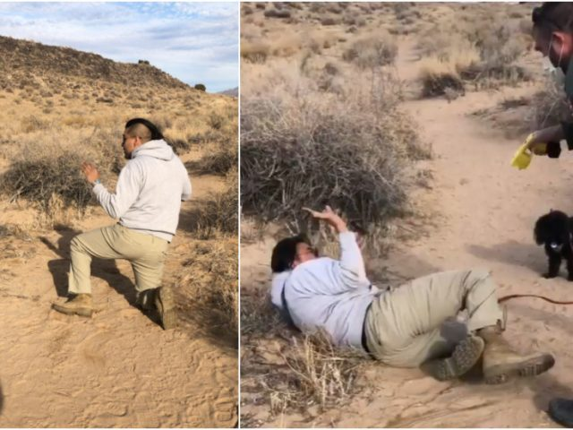 Native American man TASERED by New Mexico park ranger while walking 'off trail' at ancient Pueblo monument (VIDEO)