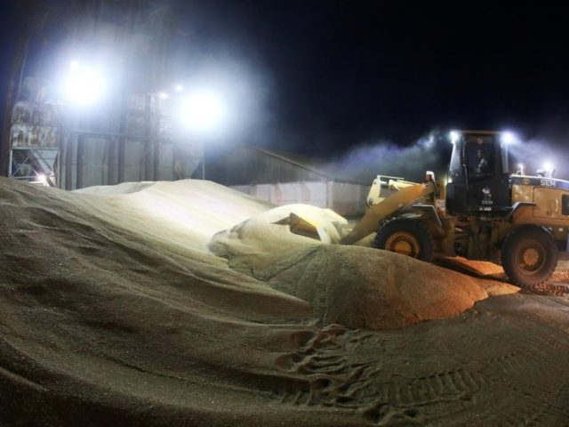 Russia to win back crown of world's top wheat exporter despite looming quotas & export tax
