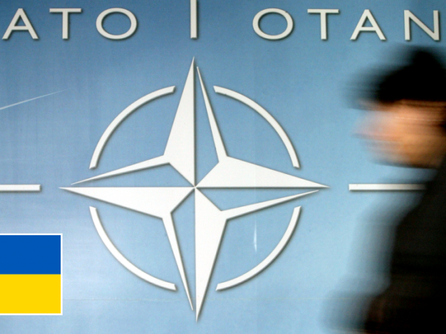 Ukraine could be admitted to NATO regardless of leaders' concerns over bloody civil war in the Donbass, bloc's Kiev envoy claims