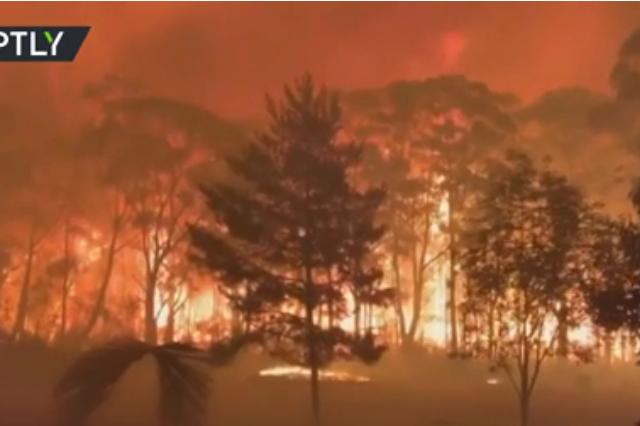 Bushfire backfire: Australian firefighters warn of 'mega blaze' as country faces another heatwave (VIDEOS)