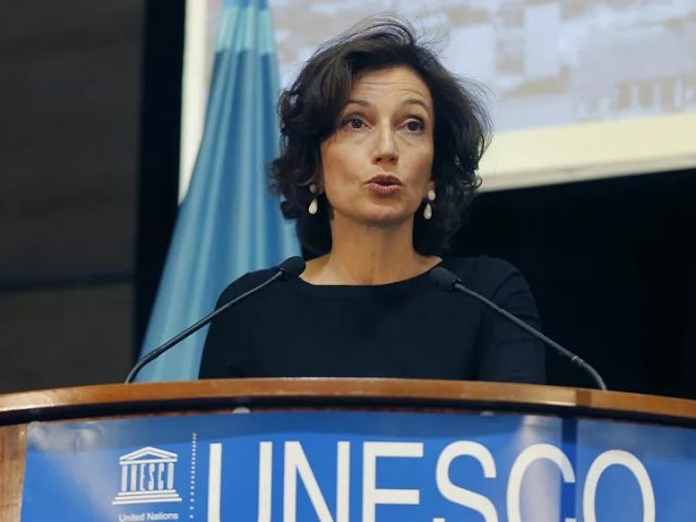 UNESCO Chief Condemns Killing of Ruptly Journalist Al-Quaiti in Yemen