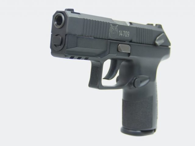 Russia unveils new firearm 'Poloz', designed specifically for the police