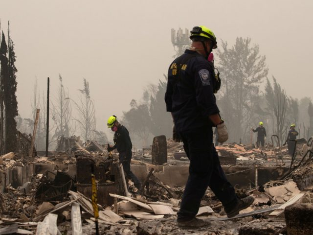 Man arrested for igniting brushfire in Portland, starts SIX MORE fires in less than 12 hours after release – police