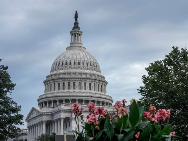 'Powers unseen since oil barons': Democrats threaten to BREAK UP Apple, Google, Amazon & Facebook, accusing Big Tech of monopolism