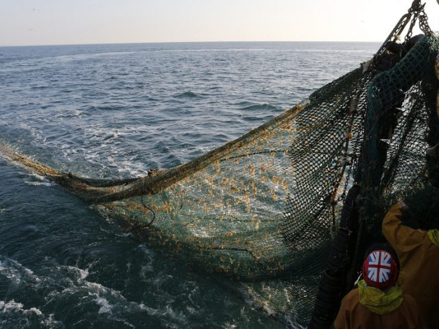 Fisheries are Britain's bargaining chip in Brexit spat with EU, business development leader tells Boom Bust