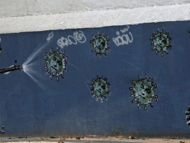New wave of anti-coronavirus lockdowns is 'crazy,' Brazil's Bolsonaro says