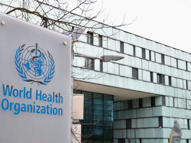 'Vital we start now': WHO reforms should not be left until after Covid-19 pandemic, says German health minister