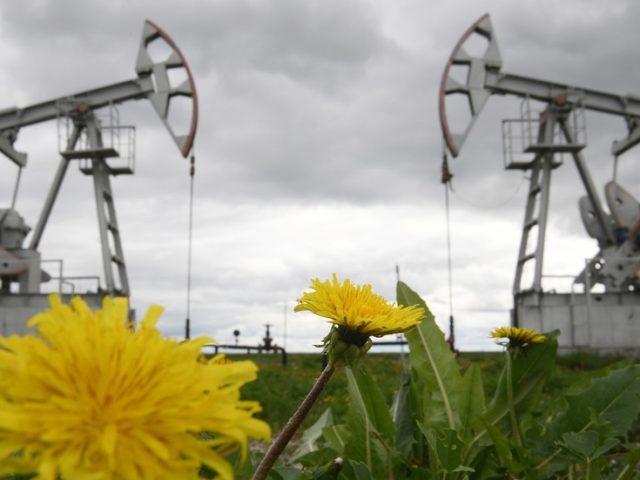 High global demand sends Russian Urals crude oil price soaring