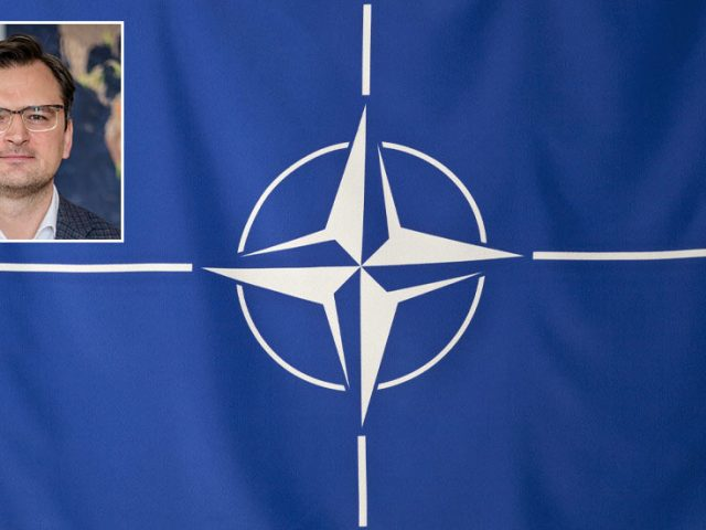 Frustrated Ukrainian Foreign Minister claims NATO has refused to take 'a single step' towards allowing Kiev join bloc since 2008