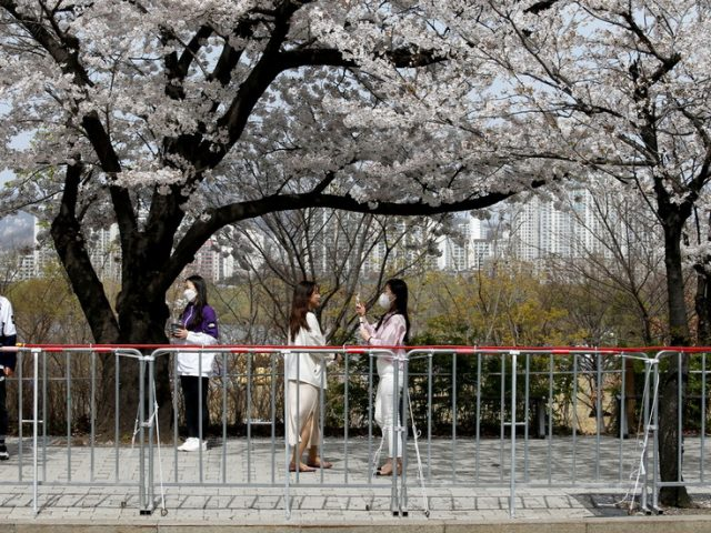 South Korea relaxes Covid restrictions on music and sports events ahead of plan to end quarantine for some vaccinated travelers