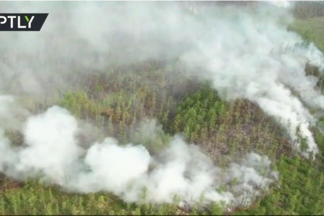 Daring Russian parachutists land in Siberia's UNESCO World Heritage Lena Pillars Nature Park to manually fight wildfires (VIDEO)