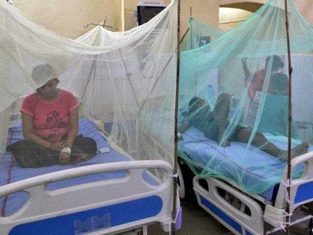 Dozens die of dengue fever in India's Uttar Pradesh, with cases of the mosquito-borne virus also reported in Delhi
